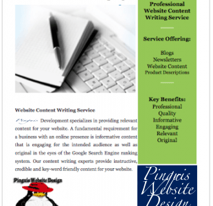 Pinguis Content Writing Ireland Pinguis Website Design Results focused Website Design