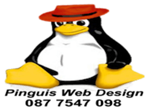 Pinguis Web Cork Website Design Cork