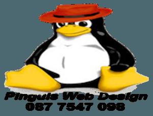 Pinguis Web Cork Website Design Cork