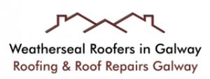 Roof Repairs in Galway