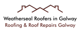 Roof Repairs in Galway
