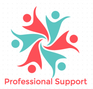 Professional Support WordPress