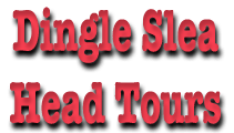 Dingle Peninsula Tours