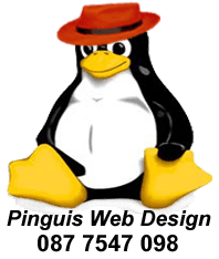 Pinguis Website Design Website Design in Kerry Ireland