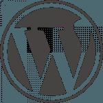 Pinguis Irish Website Developer